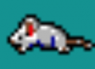Mort Mouse