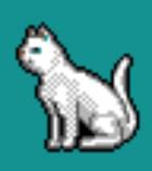Pokey the Cat